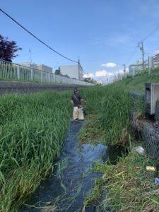 河川維持工事 草刈り集草